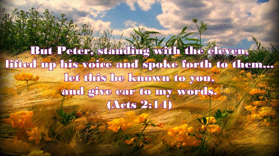 Once Peter was with the other disciples and they enjoyed God, being filled with God, he was a different person - no longer a coward, no longer denying, but rather overflowing with the enjoyment of God to the ones around (Acts 2:14)! As Peter was speaking on the day of Pentecost, he was inwardly continually partaking of Jesus, drinking and eating Him!  