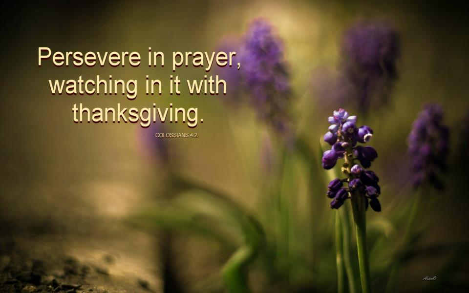Persevering in Prayer - We Choose to Stand on God's Side and Pray Persistently! [Picture: Col. 4:2, Persevere in Prayer, Watching in It with Thanksgiving]
