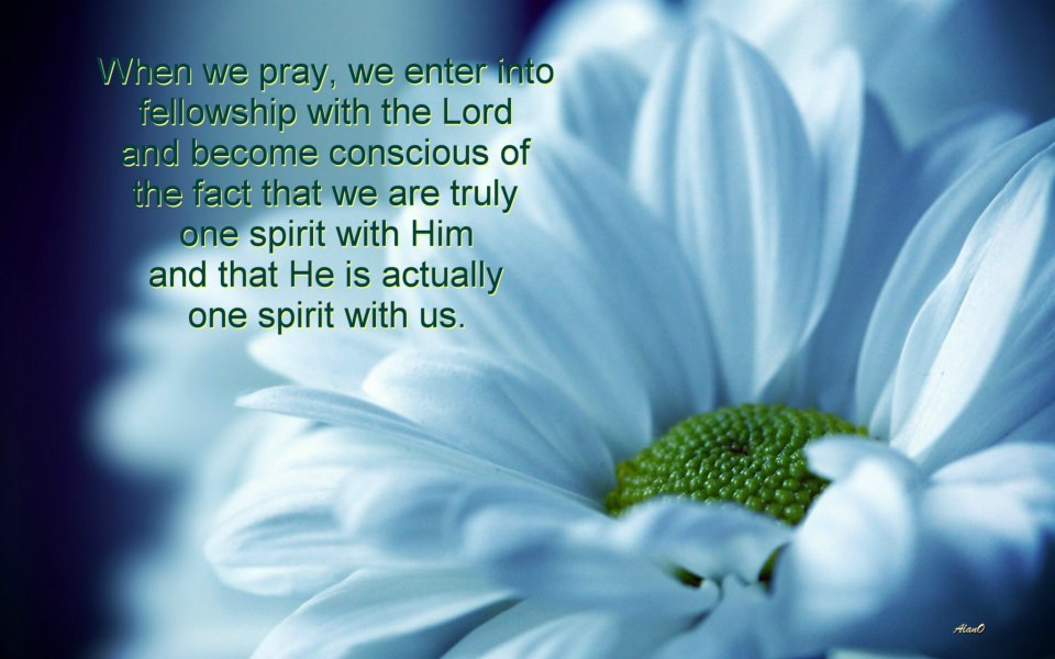 The more we pray, the more we have that sweet feeling that we are one spirit with the Lord, and we have His presence with us. His precious smile, His smiling face, is our reward. What a blessing, to have the Lord's presence when we pray! [In the picture: When we pray, we enter into fellowship with the Lord and become conscious of the fact that we are truly one spirit with Him and that He is actually one spirit with us (1 Cor. 6:17).]