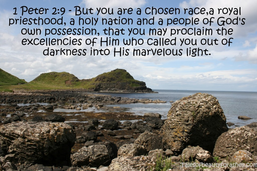 But you are a chosen race, a royal priesthood, a holy nation, a people acquired for a possession, so that you may tell out the virtues of Him who has called you out of darkness into His marvelous light (1 Pet. 2:9).