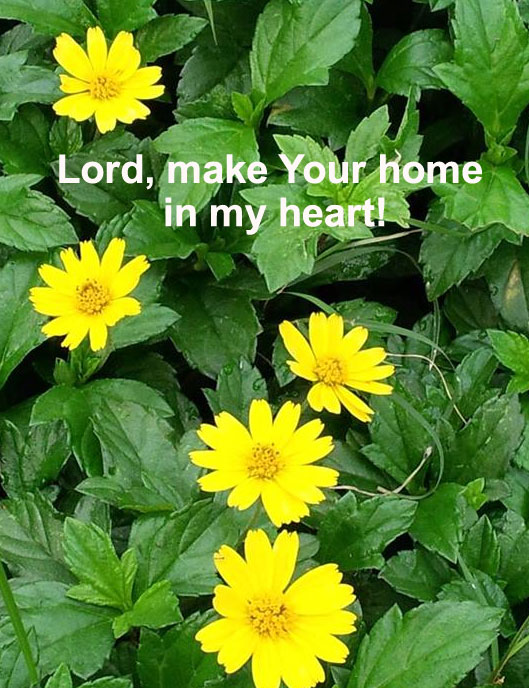 Allowing the Indwelling Christ to Make His Home in Our Heart and Feel at Home in us. Lord, make Your home in my heart!