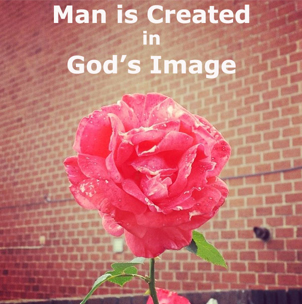 How is Man Created in the Image of God?