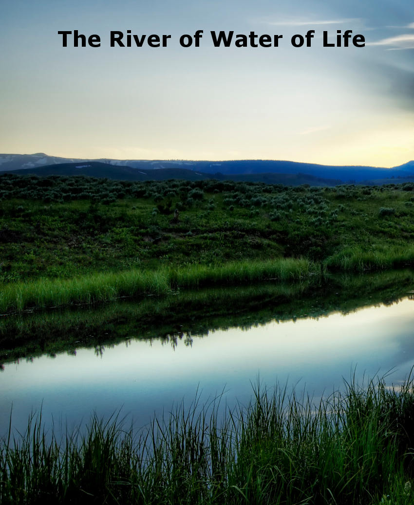 The River of Water of Life: God Reaching Man All Over the ...