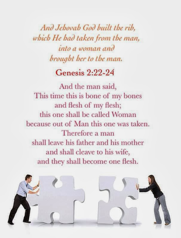 Bible study for genesis with questions