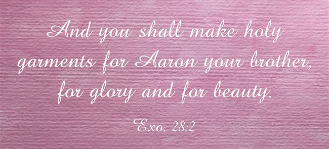 Exo. 28:2 And you shall make holy garments for Aaron your brother, for glory and for beauty.