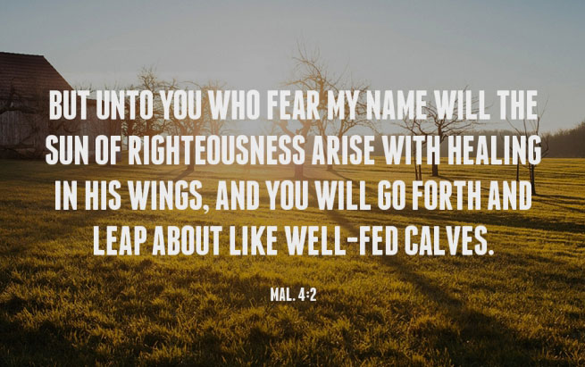 Mal. 4:2 But unto you who fear My name will the Sun of righteousness arise with healing in His wings, and you will go forth and leap about like well-fed calves.
