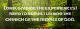 Lord, give me the experiences I need to be built up into the church as the temple of God.