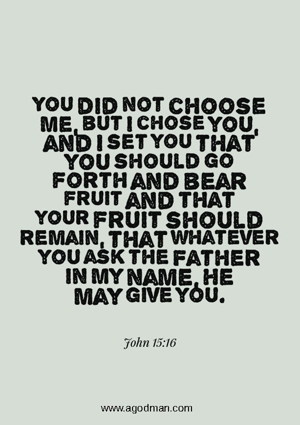 John 15:16 You did not choose Me, but I chose you, and I set you that you should go forth and bear fruit and that your fruit should remain, that whatever you ask the Father in My name, He may give you.