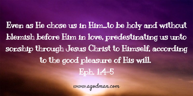 Eph. 1:4-5 Even as He chose us in Him...to be holy and without blemish before Him in love, predestinating us unto sonship through Jesus Christ to Himself, according to the good pleasure of His will.
