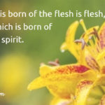 John 3:6 That which is born of the flesh is flesh, and that which is born of the Spirit is spirit.