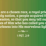 1 Pet. 2:9 But you are a chosen race, a royal priesthood, a holy nation, a people acquired for a possession, so that you may tell out the virtues of Him who has called you out of darkness into His marvelous light.