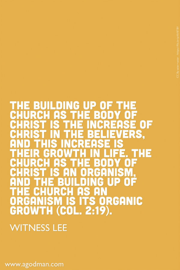 the growth of the church over the years Churches in amsterdam ofthat year at one point he raised a question that he  would certainly put to those who are currently discussing the growth and decline  of.