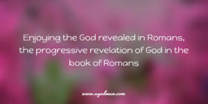 enjoying the God revealed in Romans, the progressive revelation of God in the book of Romans
