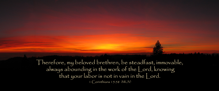 the Body is the governing law of the life and work of the children of God today