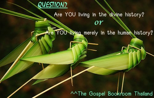 """God uses """"the locusts"""" to carry out His purpose and fulfill His interest!"""