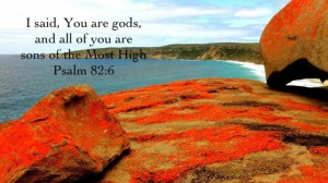 Arriving at the High Peak of the Divine Revelation and Living a God-man life