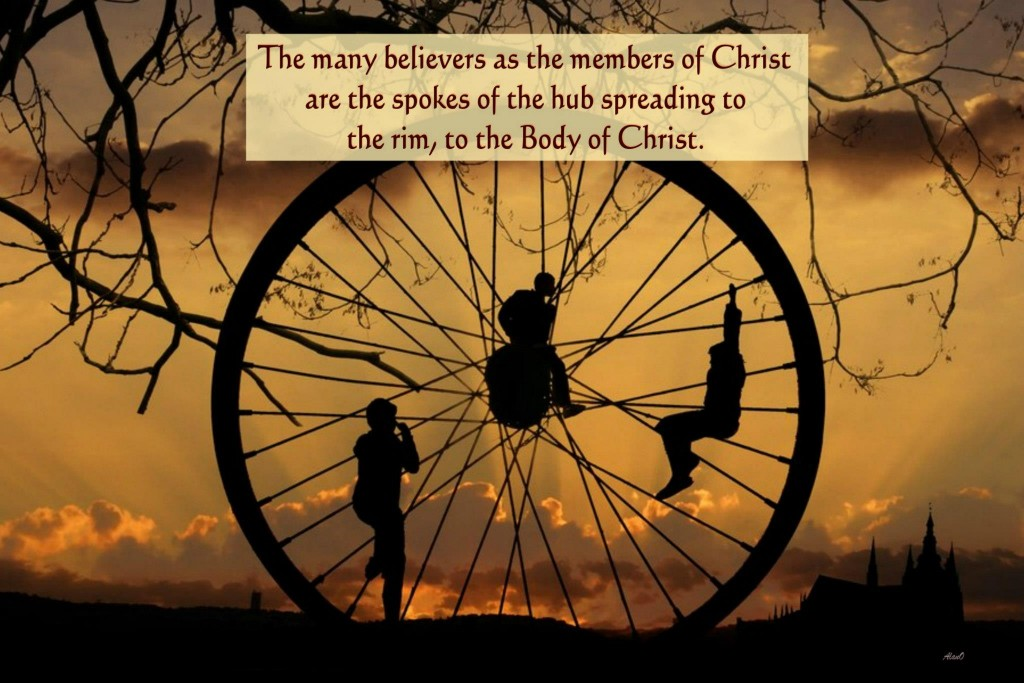 In Col. 1:16-17 we see that Christ is the hub, the One who sustains and upholds all things, and all things subsist in Him. In Eph. 1:23 we see that the church is the Body of Christ, the fullness and the enlargement of Christ. The spokes are the many believers who are holding to Christ as the center and express Him corporately as the Body of Christ! [in the picture: The many believers as the members of Christ are the spokes of the hub spreading to the rim, to the Body of Christ.]