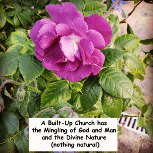 A Built-Up Church has the Mingling of God and Man and the Divine Nature (nothing natural)