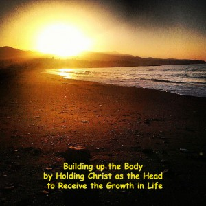 Building up the Body by Holding Christ as the Head to Receive the Growth in Life