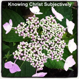 Subjectively Knowing Christ as the Indwelling One, the Life-Giving Spirit