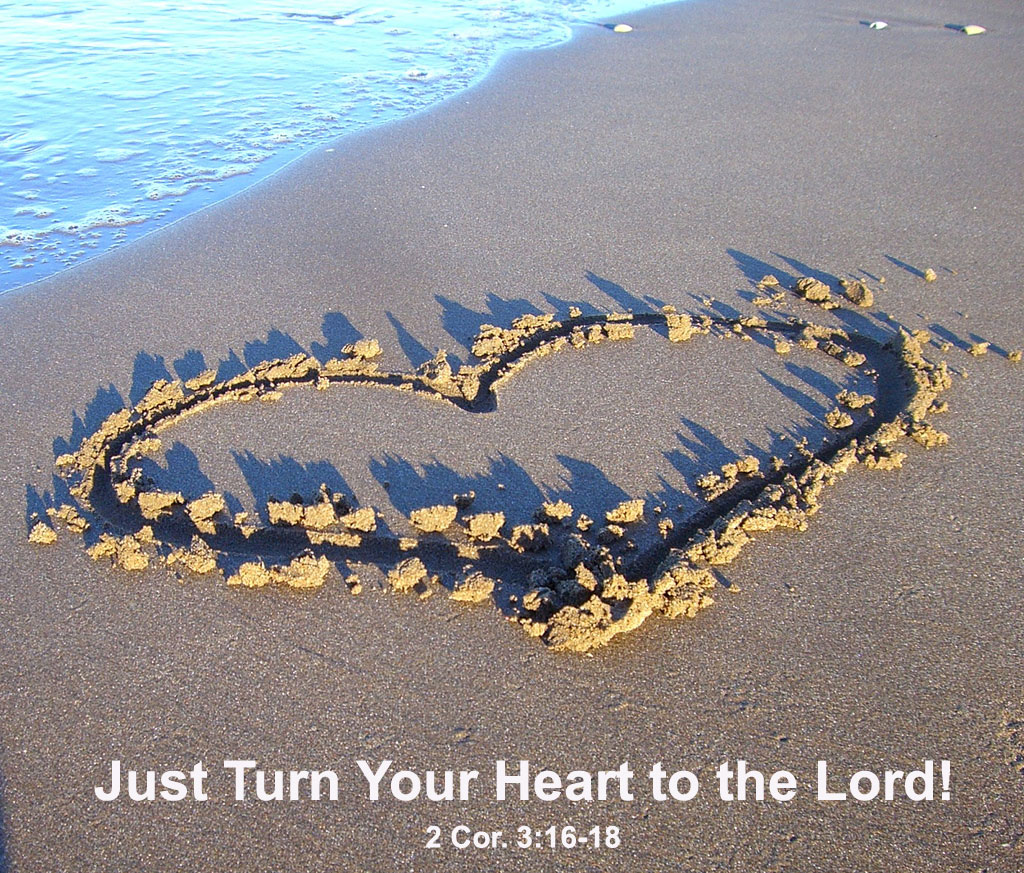 Turning our Heart to the Lord to be Metabolically Transformed into His Image. Just turn your heart to the Lord, and you will be transformed in His image (2 Cor. 3:16-18)!