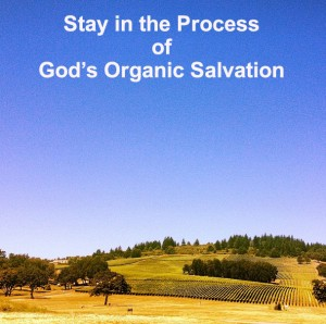 Practicing Being One Spirit with the Lord to Stay in the Process of God's Salvation
