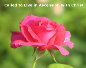 We are Called to Live with Christ in His Ascension, as Seen in Song of Songs