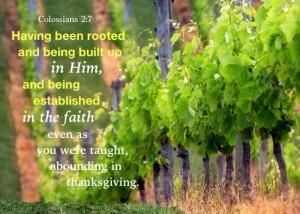 Being Full of the Stature of Christ for the Building up of the Body of Christ