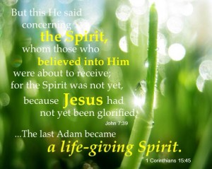 "The Triune God Went Through a Process Economically and Became ""the Spirit"" (John 7:39)"