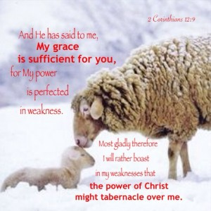 The Testimony of Jesus is the Bride of Christ, the Weaker Ones who Depend on the Lord