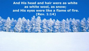 The Glorious Christ in Revelation 1: His Hair is White, His Eyes like a Flame of Fire