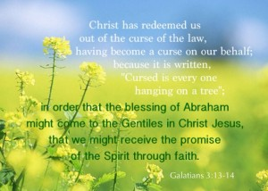 The Seed of Abraham is First Christ and Then the Believers in Christ, the Body