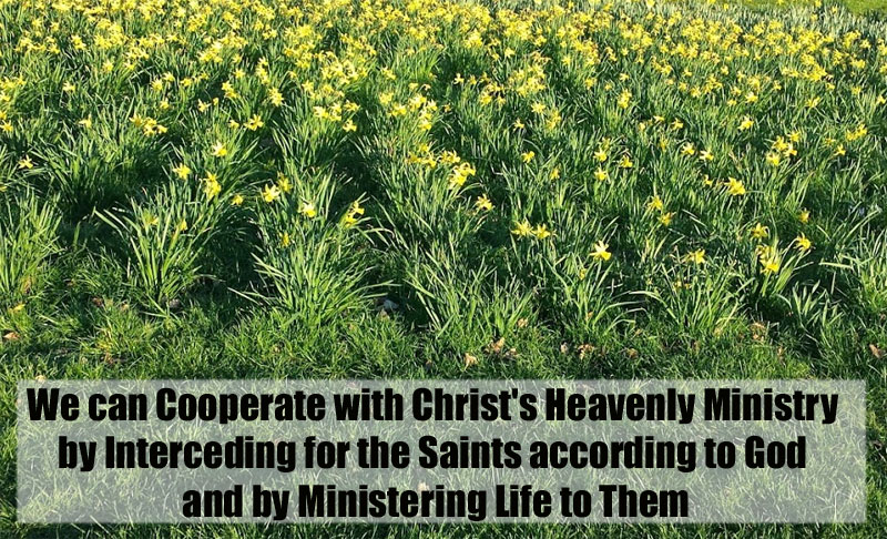 Knowing Christ As The High Priest In His Heavenly Ministry