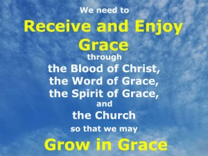 Enjoying Grace to Grow in Grace through the Blood, the Word, the Spirit, and the Church