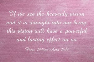 Seeing the Governing Vision in the Bible, the Vision of God's Economy, Changes Us