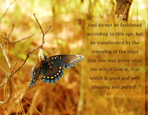 Everything that Happens to us is Under God's Sovereignty for our Transformation