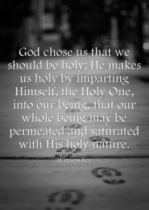 The Divine Sonship is Accomplished by our being Mingled with God unto Sanctification
