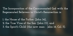 Christ's Resurrection Issued in the Son's Vine and the Spirit's Child (the New Man)