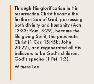 In His Resurrection Christ was Glorified, Became God's Firstborn Son, and Regenerated us