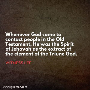 The Spirit of Jehovah with the Element of the Triune God in God's Relation with Man