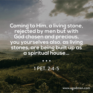 The Stones in the Temple signify Christ and His Transformed Believers as Living Stones