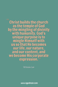 Letting Christ Build Himself into us and Build us into God by Abiding in the Lord