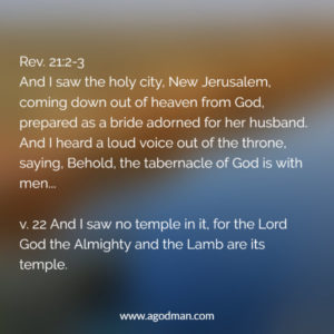 The Triune God and Redeemed Humanity will be Mingled and Built up as New Jerusalem