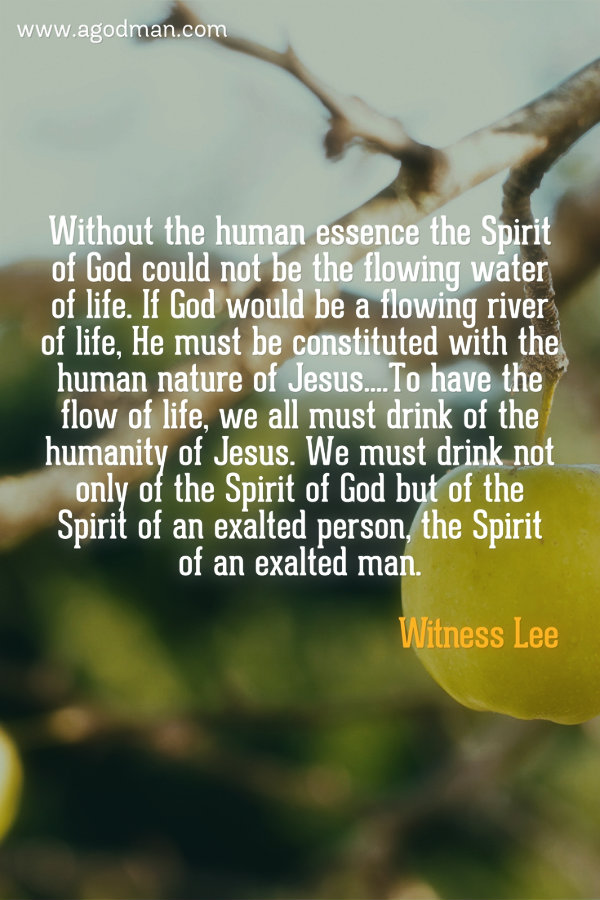 Without the human essence the Spirit of God could not be the flowing water of life. If God would be a flowing river of life, He must be constituted with the human nature of Jesus....To have the flow of life, we all must drink of the humanity of Jesus. We must drink not only of the Spirit of God but of the Spirit of an exalted person, the Spirit of an exalted man. Witness Lee