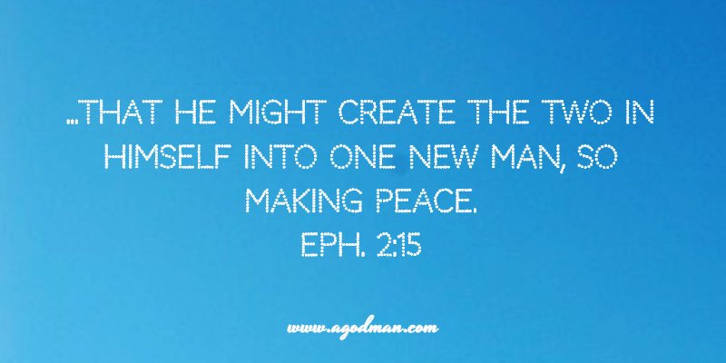Eph. 2:15 ...That He might create the two in Himself into one new man, so making peace.