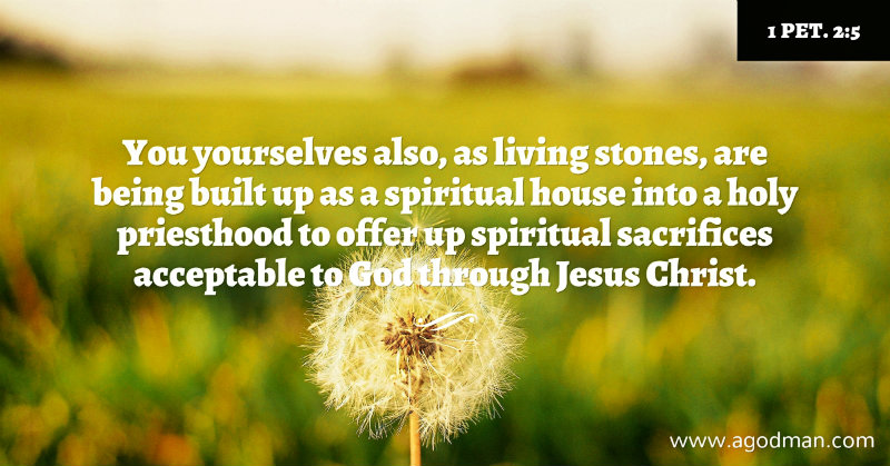 1 Pet. 2:5 You yourselves also, as living stones, are being built up as a spiritual house into a holy priesthood to offer up spiritual sacrifices acceptable to God through Jesus Christ.
