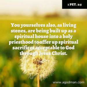Only when we are Built and Coordinated into the Building can we Serve the Lord