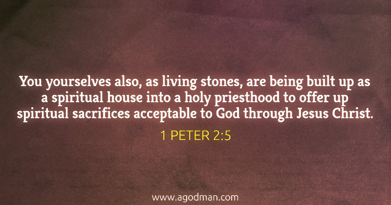 1 Peter 2:5 You yourselves also, as living stones, are being built up as a spiritual house into a holy priesthood to offer up spiritual sacrifices acceptable to God through Jesus Christ.