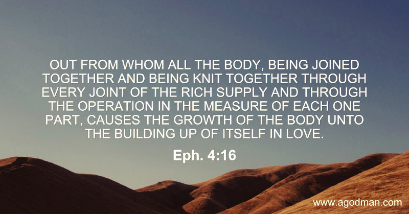 Eph. 4:16 Out from whom all the Body, being joined together and being knit together through every joint of the rich supply and through the operation in the measure of each one part, causes the growth of the Body unto the building up of itself in love.