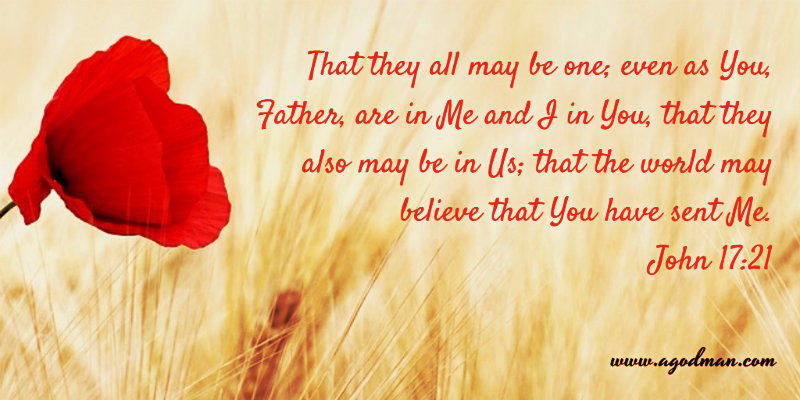 John 17:21 That they all may be one; even as You, Father, are in Me and I in You, that they also may be in Us; that the world may believe that You have sent Me.